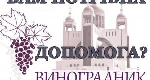 """Наша Спільнота """"Виноградник"""" пропонує допомогу вірним парафії Патріарший Собор"""